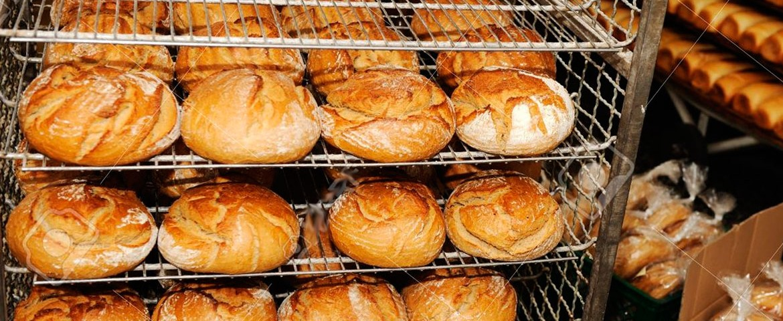 appcc panaderias